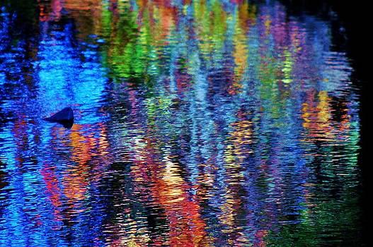 Kaleidoscope by Helen Carson