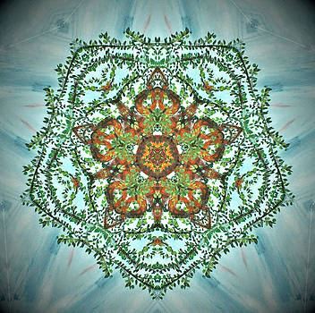 Kaleidoscope Leaves by Heather  Hubb