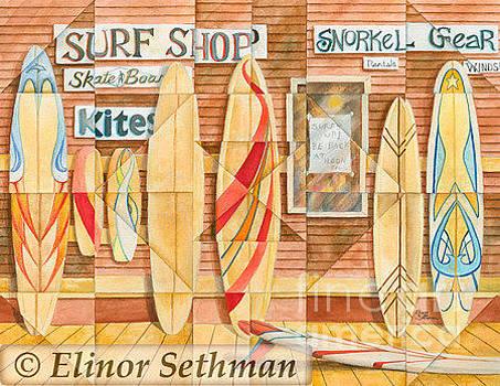 Kaleidoscope Surf Shop by Elinor Sethman