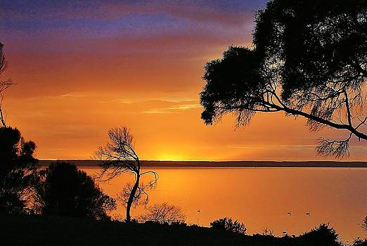 Kangaroo Island - Sunrise by David Barringhaus