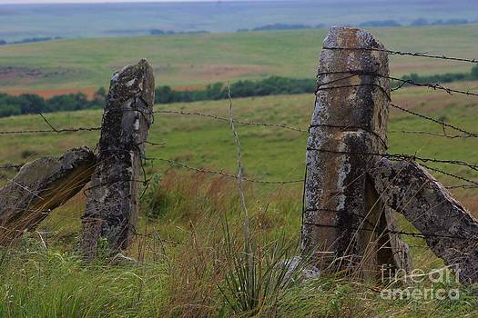 Kansas Country Limestone Fence Post close up with grass by Robert D  Brozek