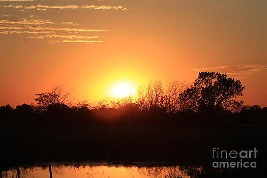 Kansas Orange Sunset reflection with water by Robert D  Brozek