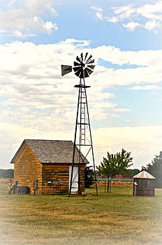 Marty Koch - Kansas Windmill 1