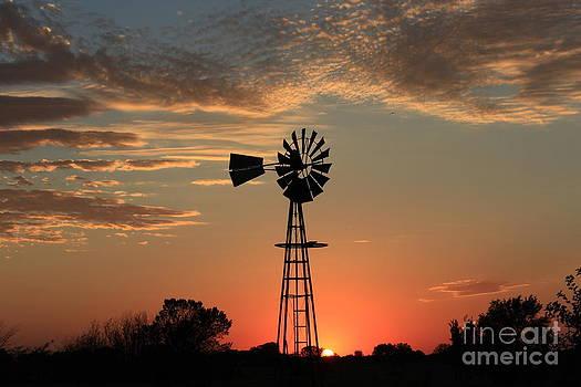 KansasWindmill silhouette Sunset by Robert D  Brozek