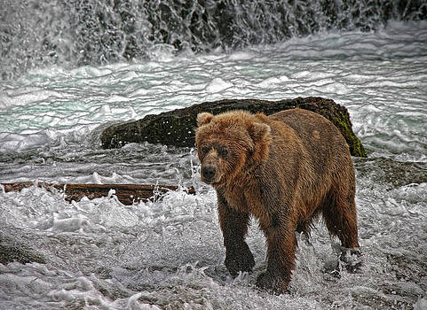 Katmai by Ronald Lafleur