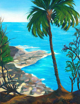 Kaua'i Lava Rocks by Colleen Ward