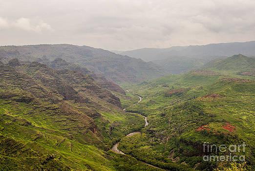 Darcy Michaelchuk - Kauai Valley in Mist