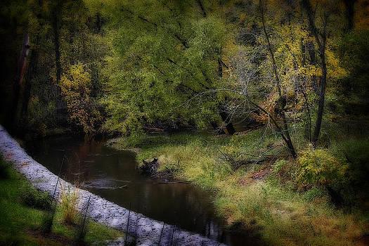 Scott Hovind - Kearsley Creek