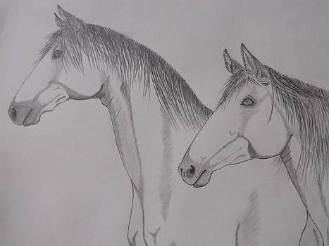 Keiger Mustangs by Gerald Strine