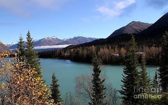 Kenai River Vista by Theresa Willingham