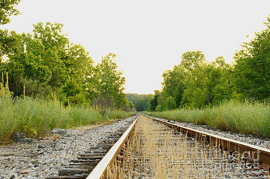 Kent Railroad Sunset Perspective by Diane Stresing