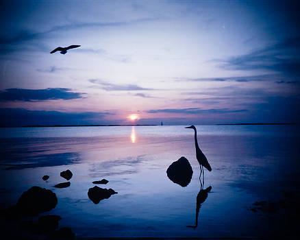 Key Largo Blue Daze of Summer by Elaine Snyder