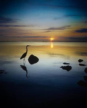 Key Largo Solitary Fisher by Elaine Snyder
