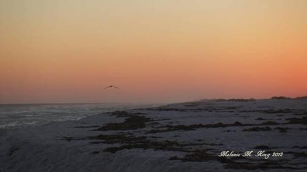 Kiss the Horizon by Melonie King