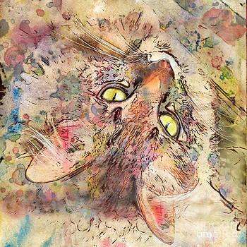 Marilyn Sholin - Kitty Fluffs