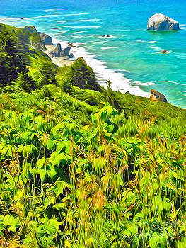 Gregory Dyer - Klamath Coast Lookout - 01