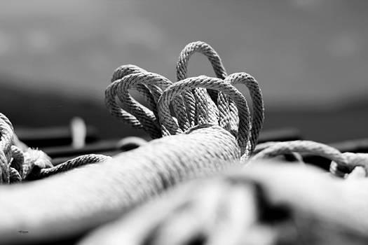 Knot by Yekaterina Grigoryeva