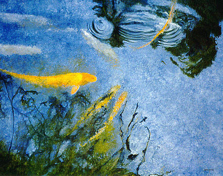 Koi Blue by Lawrence P Kaster