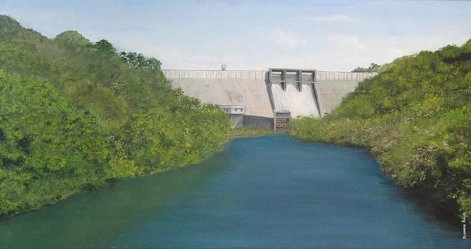 KR 371 Thenmala Dam by Kishor Raja
