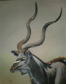 Kudu Antelope by Charlie Brown