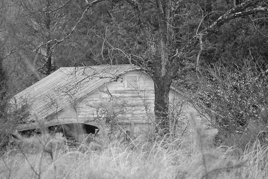 Kyle's Barn by Julie Strickland