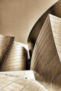 LA Concert Hall by SM Shahrokni