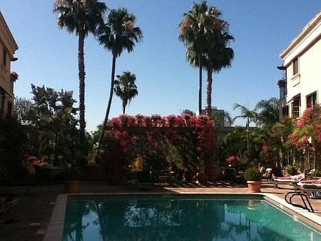 LA Pool by David Stich