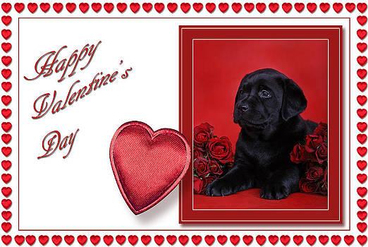 Waldek Dabrowski - Labrador Valentine card 2