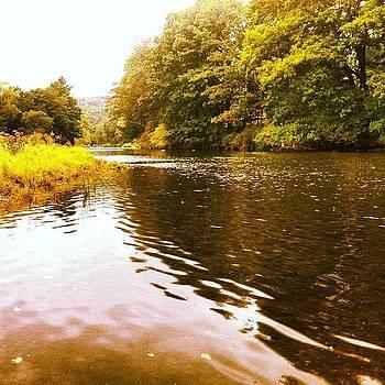 Lackawaxen River by Dave M