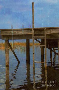 Ladder by Bob Senesac