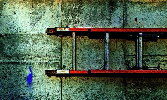 Ladder by James Bull