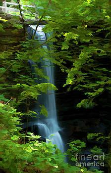 Lake Falls by Maria Aiello