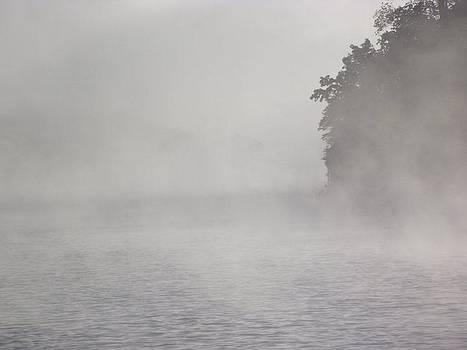 Lake Fog by Terrill Wilson