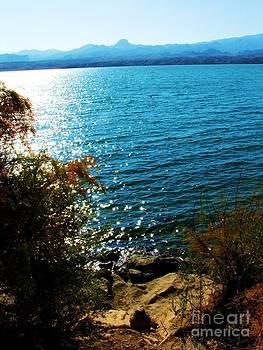 Lake Havasu by Annie Gibbons