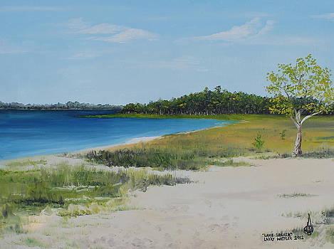 Lake Louisa by Larry Whitler