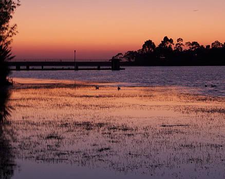Lake Miramar Sunset 4 by Jeremy McKay