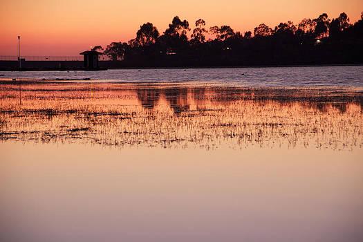 Lake Miramar Sunset 5 by Jeremy McKay