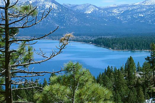 Lake Tahoe by Kenji Lauren Tanner