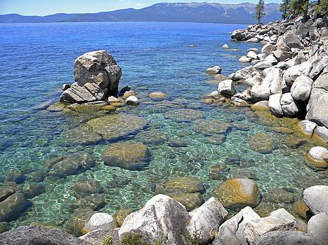 Frank Wilson - Lake Tahoe Shore