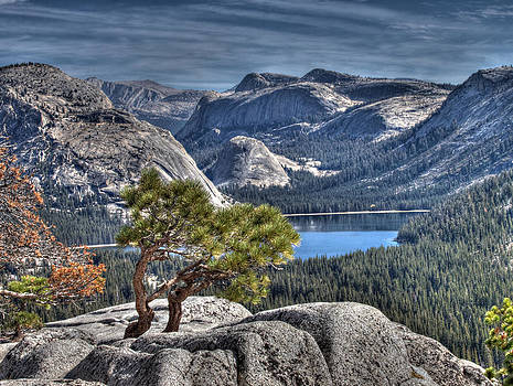 Lake Tenaya from Olmsted Point by Joe Schofield