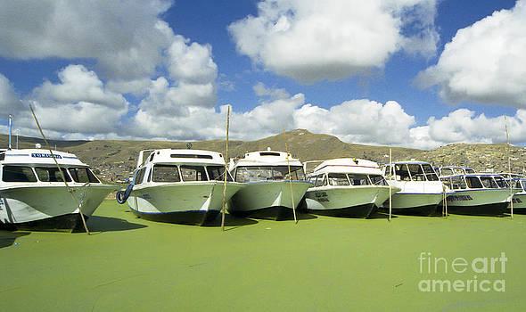Darcy Michaelchuk - Lake Titicaca Boat Harbor