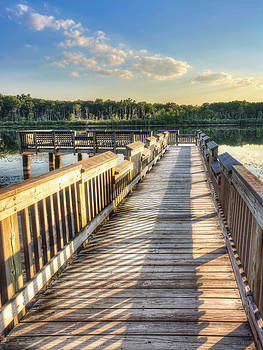 Lake View Boardwalk by Jenny Ellen Photography