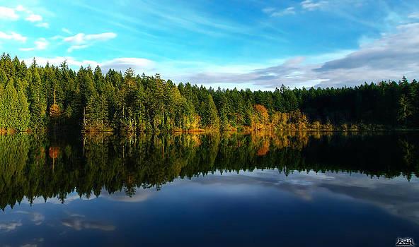 Lakeside Reflections by Cary Ligon