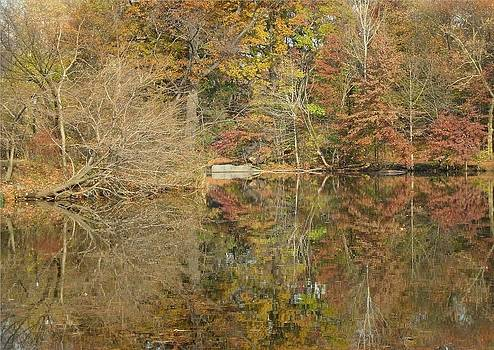 Lakeside Reflections by Sarah McKoy