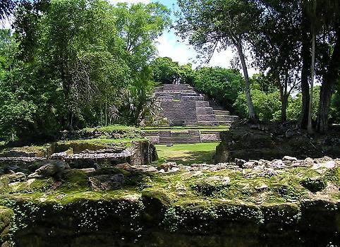 Li Newton - Lamanai- Belize