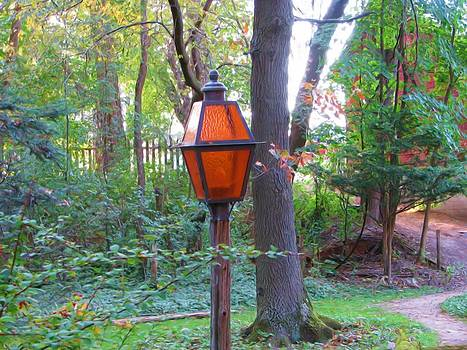 Lamp On A Wooded Path by Victoria Sheldon