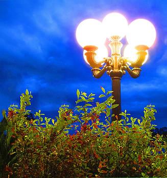 Lamp unto my feet by Shannon Hill