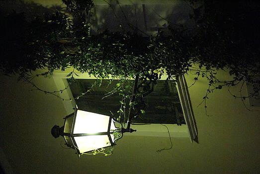 Lampione 2 by Niki Mastromonaco