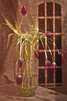 Lamplit Tulips by Jill Balsam