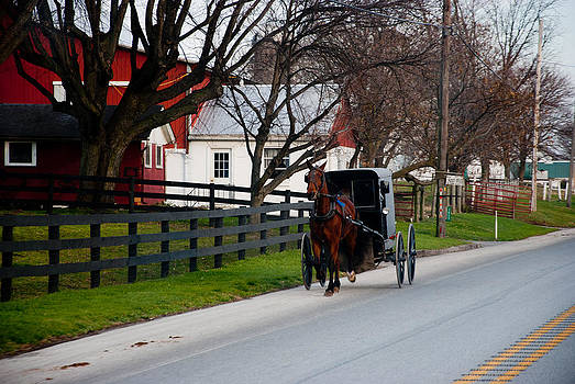 Lancaster County Horse and Buggy by Heidi Reyher